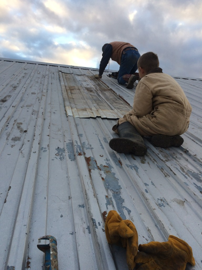 Faithful Homestead roof repair 1